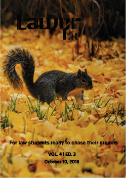 Lawyr.it Issue 4.3